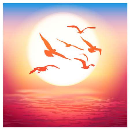 golden dusk: Vector illustration of sea birds at sunset Illustration