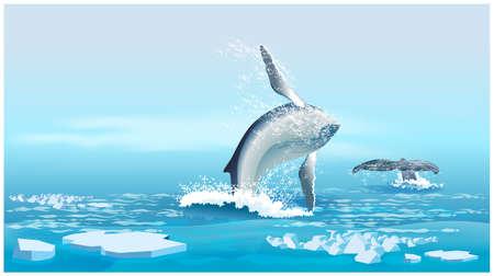Gestileerde vector illustratie van een walvis in het midden van het ijs in de Noordelijke IJszee Stock Illustratie