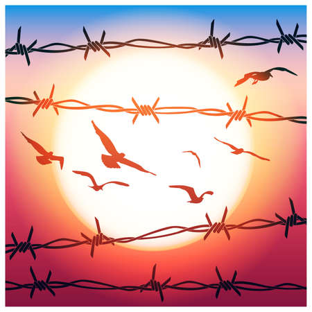 razor wire: Stylized vector illustration of barbed wire and flying birds in sunlight