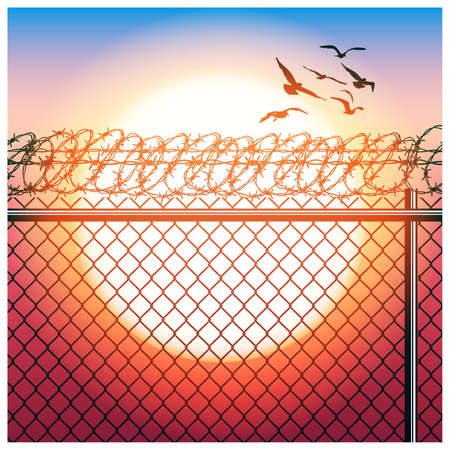 chainlink fence: Stylized vector illustration of fence with barbed wire and flying birds in sunlight Illustration