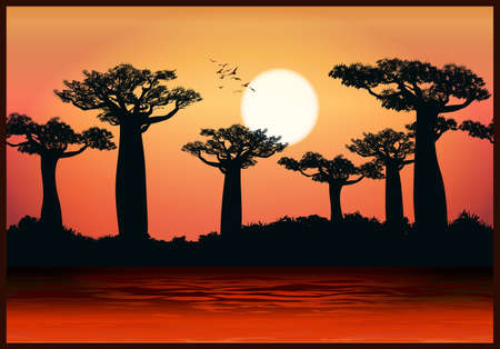 Vector illustration of baobab trees in the last rays of the sun. Seamless horizontally if needed Illustration