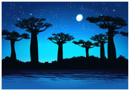 baobab: Vector illustration Baobab trees at night. Seamless horizontally if needed