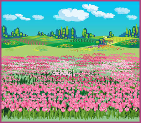 Seamless horizontally illustration of the vast fields of tulips in the beautiful countryside 向量圖像