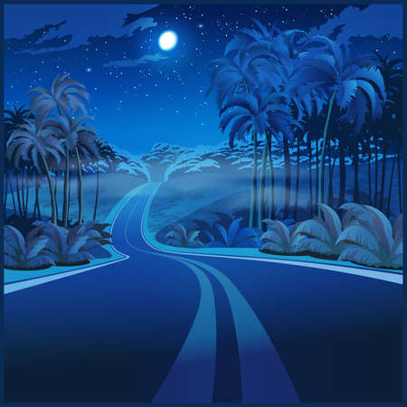 Stylized vector illustration of a road through the jungle at night  イラスト・ベクター素材