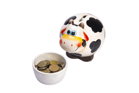 closeup cow face: cow a moneybox before a cup with coins on a white background