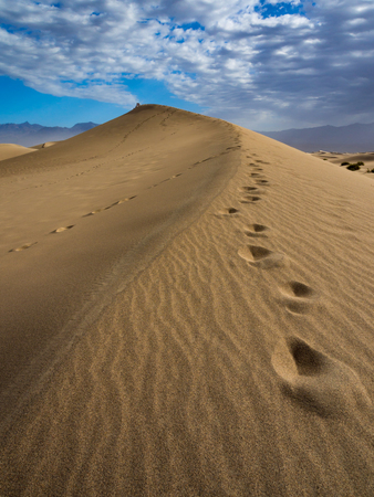Sand Dune with Footprints, Trail in the Sand, Death Valley National Park