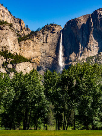 Yosemite Falls, Forest and Valley Meadow 版權商用圖片