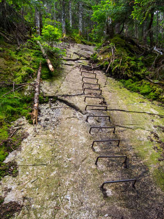Metal Holds in Rock, Hiking Trail, Ladder up Rock
