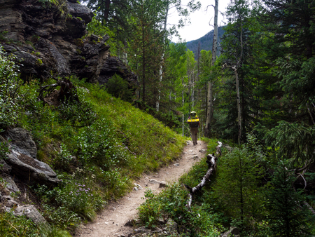 Hiker on Footpath Through Rocky Mountains Forest, Continental Divide Trail, Colorado