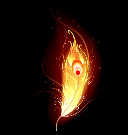 author: artistically drawn, flaming phoenix feather on a black background.