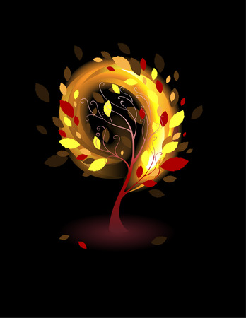 Autumn tree with orange and red leaves on a black background. Stock Vector - 23290886