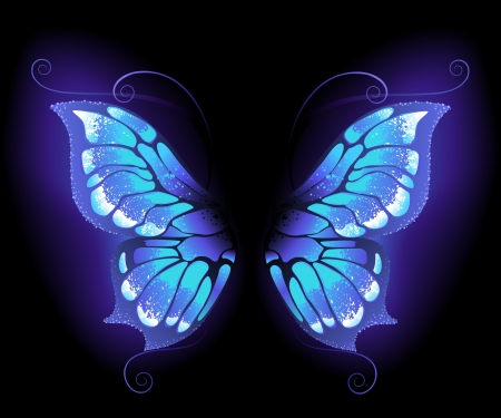 glowing, purple butterfly wings on a black background.  Illustration
