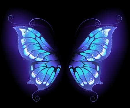 incandescent, ailes de papillon violet sur un fond noir. Vecteurs