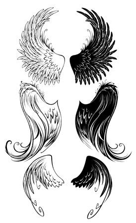 ali angelo: artisticamente dipinte ali di angelo su sfondo bianco. Vettoriali