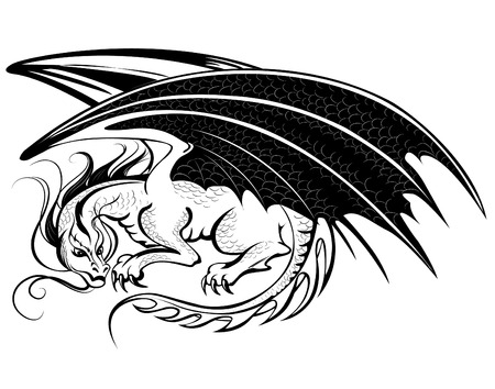 winged dragon: artistically painted black dragon on a white background.