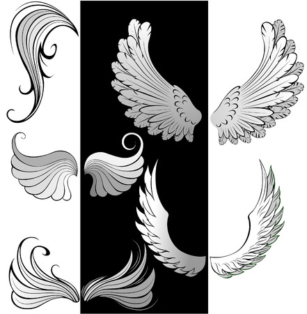 artistically painted, stylized, contoured wings  Vector