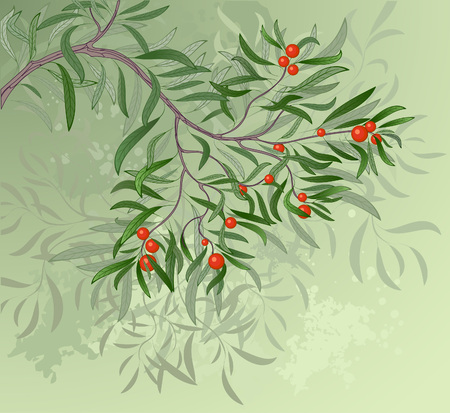 artistically painted green branch with red berries on a green background