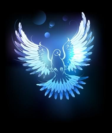 천국: 빛나는 검은 배경에 비둘기 비행