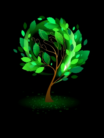 tree with green leaves on a black background