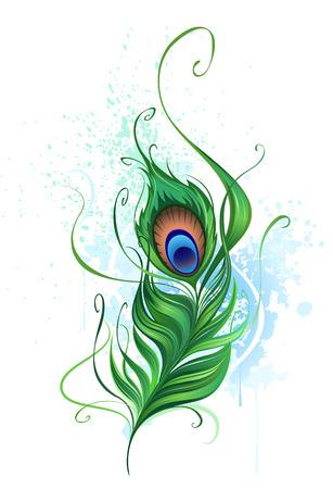 pluma: Artes pintó un colorido pluma de pavo real sobre un fondo blanco manchado de pintura de acuarela