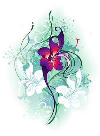 artistic painted, beautiful purple flower with green plants on a white background  Vector