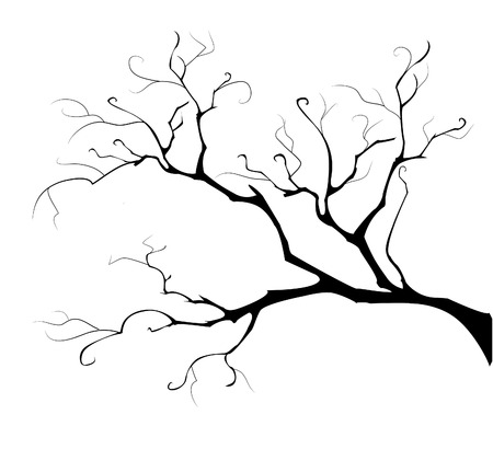 black branch: black silhouette of the branch tree on white background
