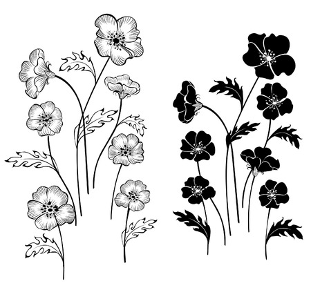 artistically: artistically painted delicate flowers on a white background