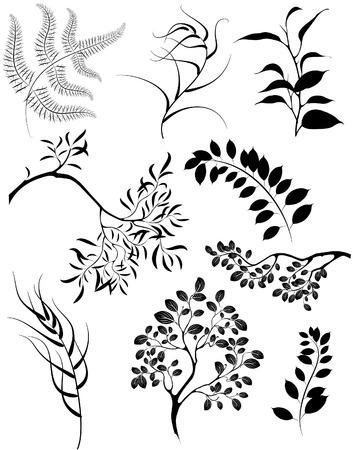 artisticamente dipinte sagome stilizzate di rami e piante ornamentali