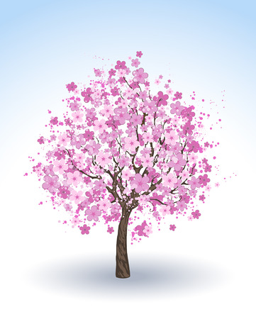 artistically: artistically painted pink flowering cherry tree on a white.