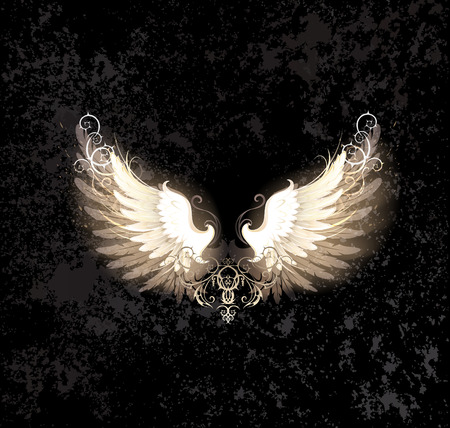 glowing angel wings , decorated with a pattern on a dark textural background  Vector