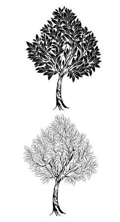 two artistically drawn , contour , young tree on a white background  Vector