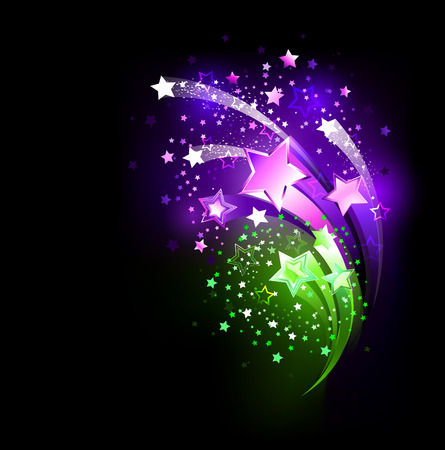 fireworks purple and green on a black background  Vector