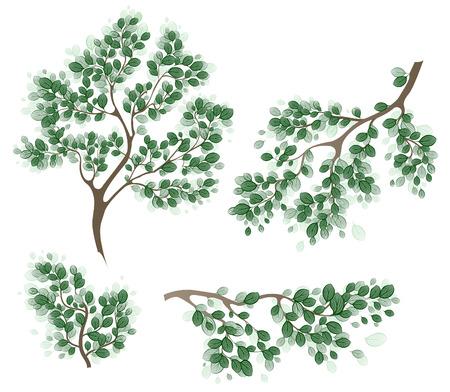 green branches Stock Vector - 27414902