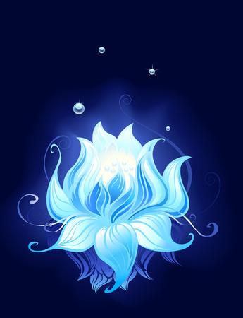 어두운 물에 반영이 슬 푸른 연꽃