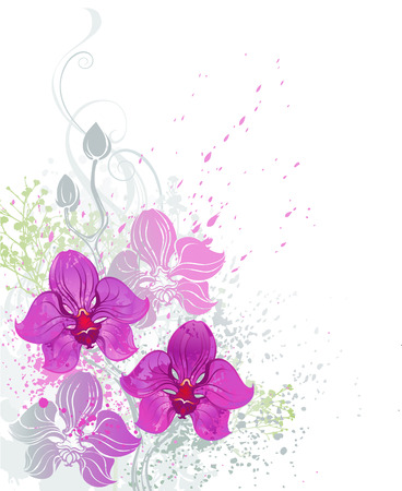 white orchids: stylized beautiful pink orchid painted bright paint on a white background