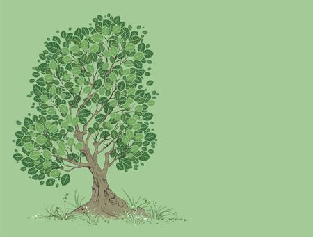 artistically: vector artistically painted tree with green leaves on a green background.