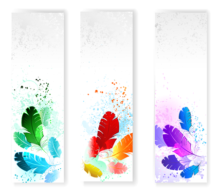 Three banners with colored feathers on gray grunge background