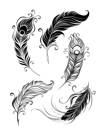 pluma de pavo real: conjunto de plumas artísticamente pintadas sobre un fondo blanco. Vectores