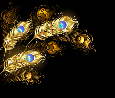 feather boa: gold peacock feathers on a black background.