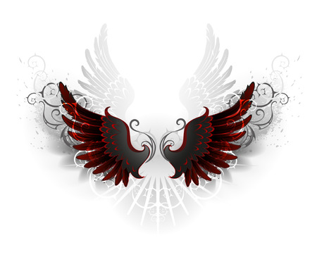 gothic angel: black wings , decorated with a pattern on a white background