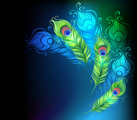 bright peacock feathers on a black glowing background Illustration