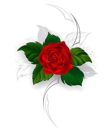 künstlerisch bemalt, blühende rote Rose mit grauen Blättern im Stil einer Tätowierung auf einem weißen Hintergrund.