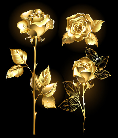 rose stem: Set of gold, shining roses on a black background
