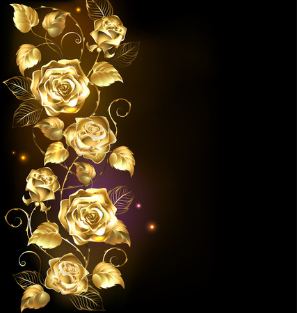 rosas negras: rosas de oro trenzado sobre un fondo negro. Vectores