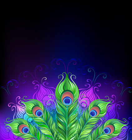 peacock tail on glowing black background Illustration