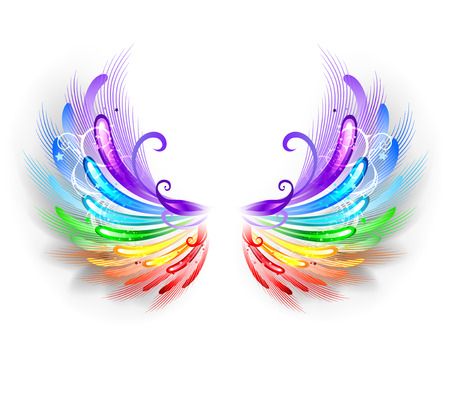 fluffy rainbow wings on a white background.