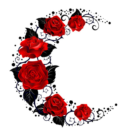 Mystical moon painted black stems and red roses on a white background.  Tattoo style. Illustration