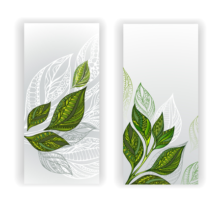tea plantation: Two banners with patterned, green, gray and white tea leaves and sprouts. Tea design.