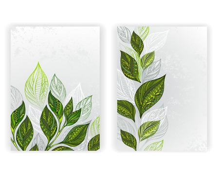 Conception avec des feuilles à motifs, vert et gris de thé sur un fond de texture gris. conception de thé. mise en page au format A4.