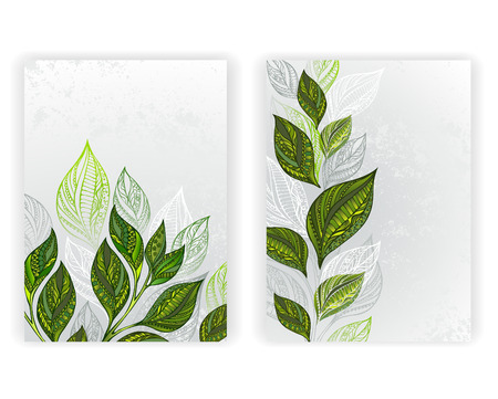 tea plantation: Design with patterned, green and gray leaves of tea on a gray textural background. Tea design.  layout in A4 size.